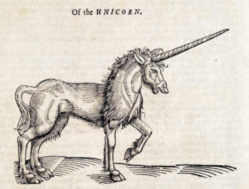 Unicorn depictions in Scotland