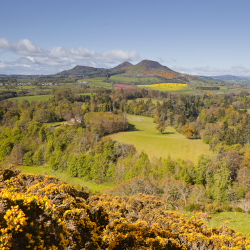 SCOTTS_VIEW_SCOTTISH_BORDERS_TWEED_VALLEY_scrop.jpg