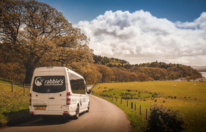Loch Awe trees