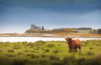 Islay, Iona, Mull & Skye - 8 day tour