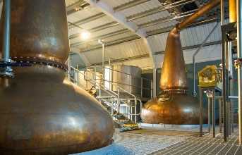 A Taste of Scotland's Craft Beer & Whisky  - 1 day tour